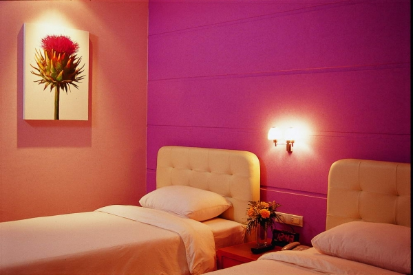 guest-room05F85D862B-D989-41F0-B1DF-48A58AC36A7B.jpg
